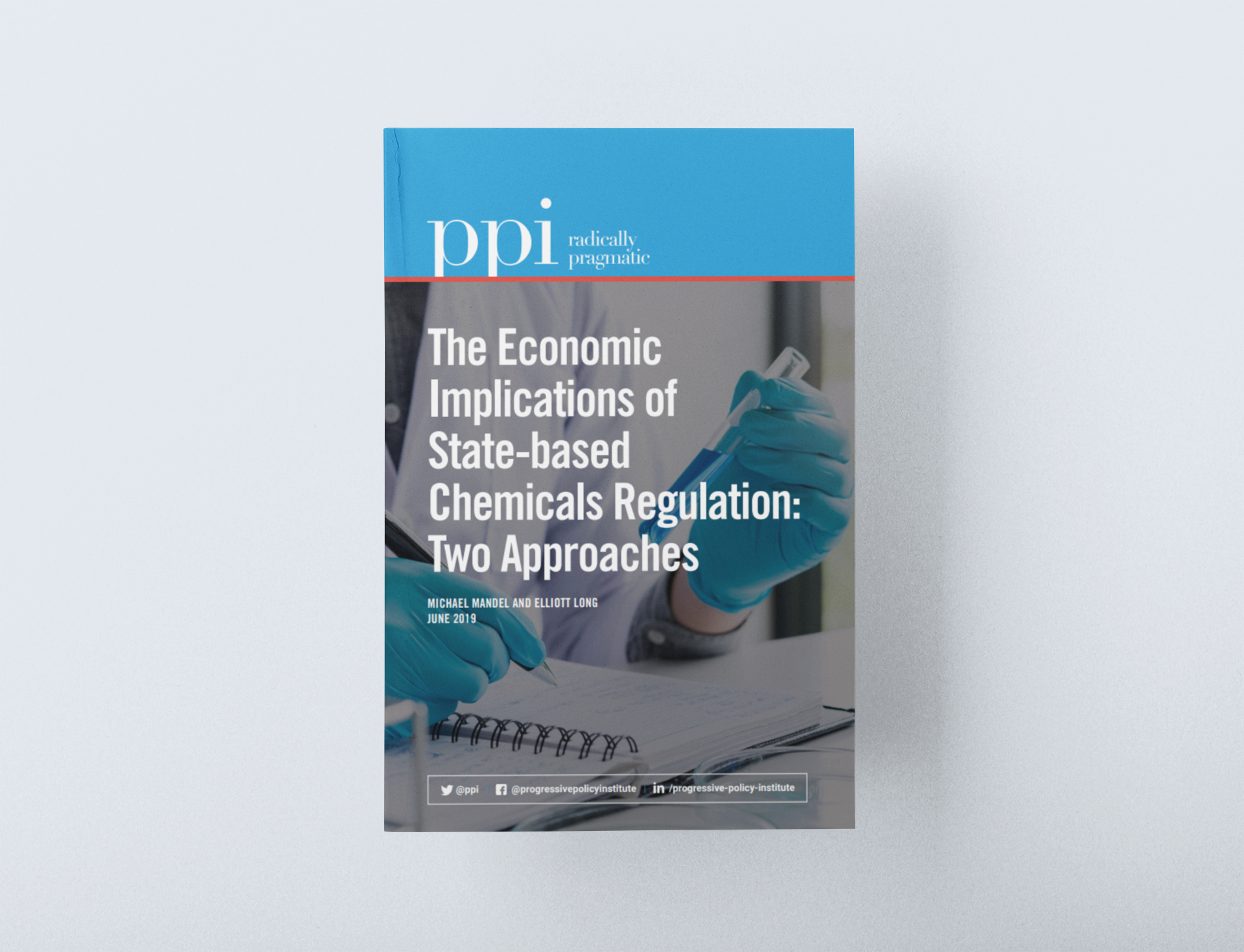 The Economic Implications of State-based Chemicals Regulation: Two Approaches